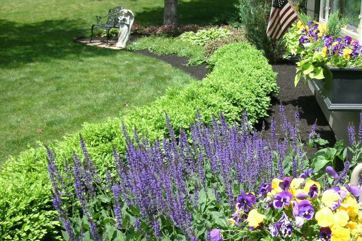 Breathe New Life Into Your Landscape