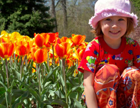 tulips and girl